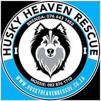 heaven-husky-rescue-client